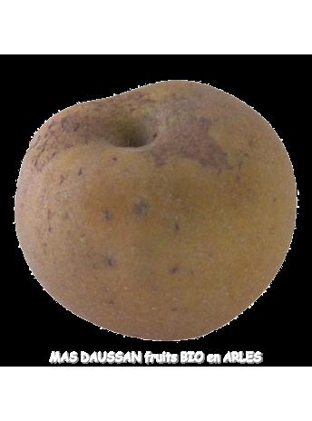 pomme reinette grise du canada pommes demeter