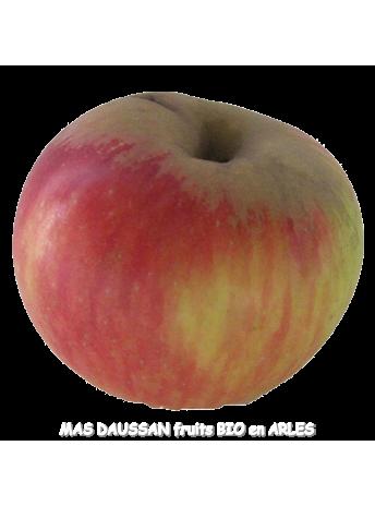 pomme reine des reinettes bio pommes demeter