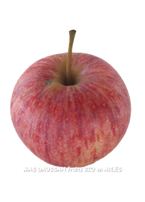 pomme royal gala bio pommes demeter