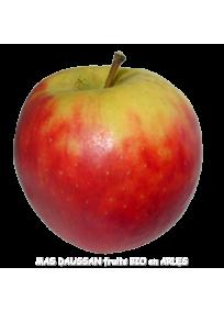 pomme elstar bio demeter