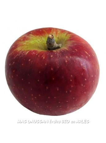 pomme redwinter bio pommes demeter